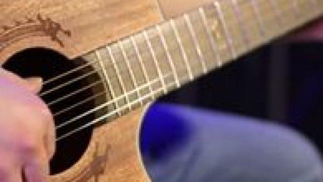 Видео-обзор акустической гитары Bulldog WS-Delta 3